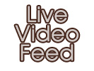 Live Video Feed